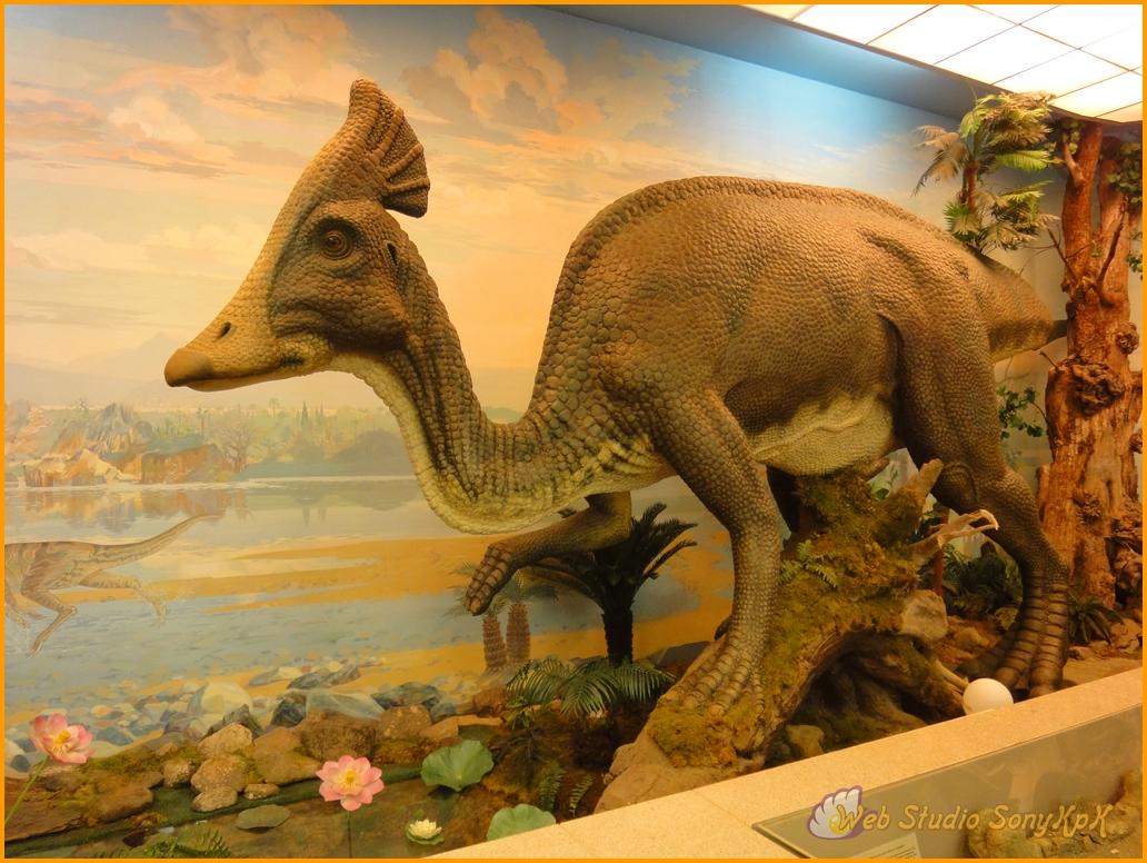 смотреть динозавров, динозавры, доисторические динозавры