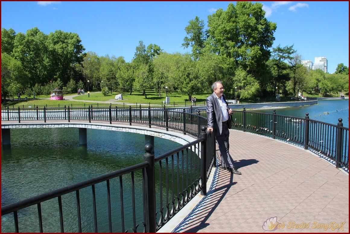 пруды, мост, вода, парк, прогулка