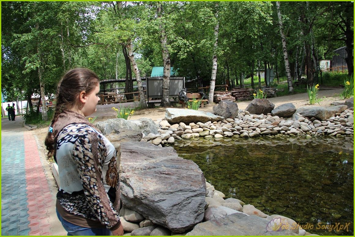 зоосад, зоопарк, водопад, ландшафтный дизайн