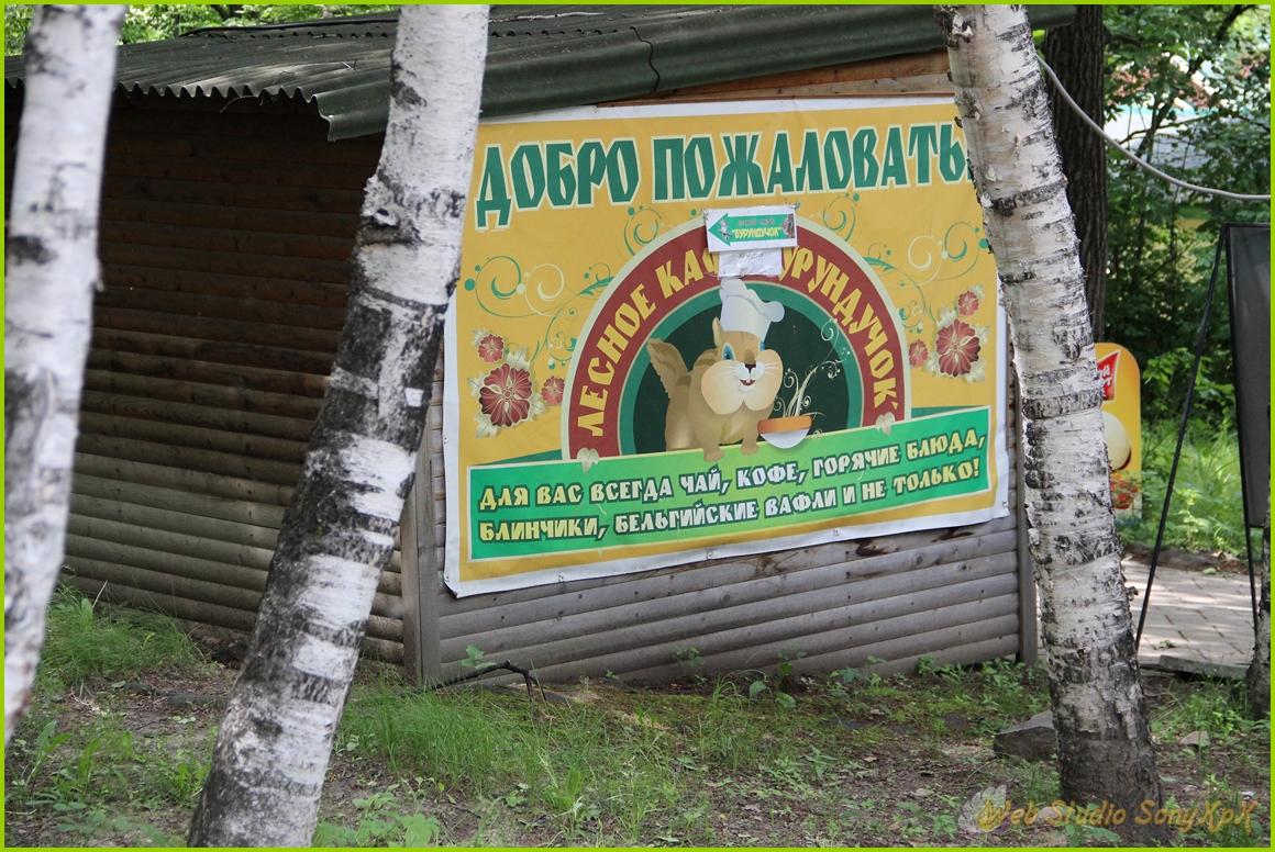 Зоосад, зоопарк, природа, животные, дикие животные