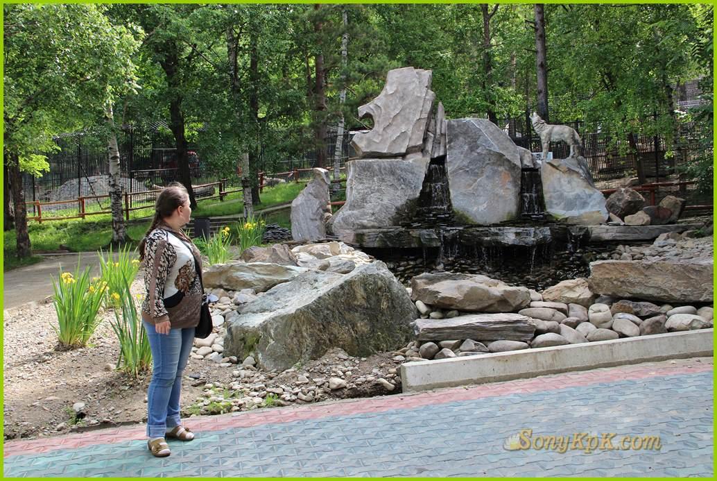зоосад, зоопарк, животные, экскурссия, поход, природа
