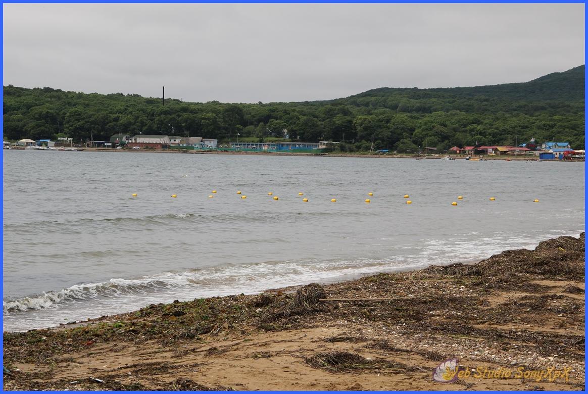 А волны так и набегают на берег, волнуя морскую капусту