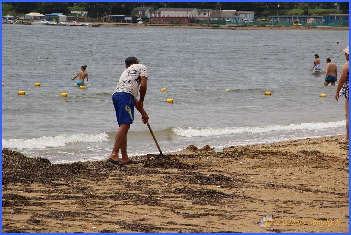 Благородное занятие - очищать вовремя пляж