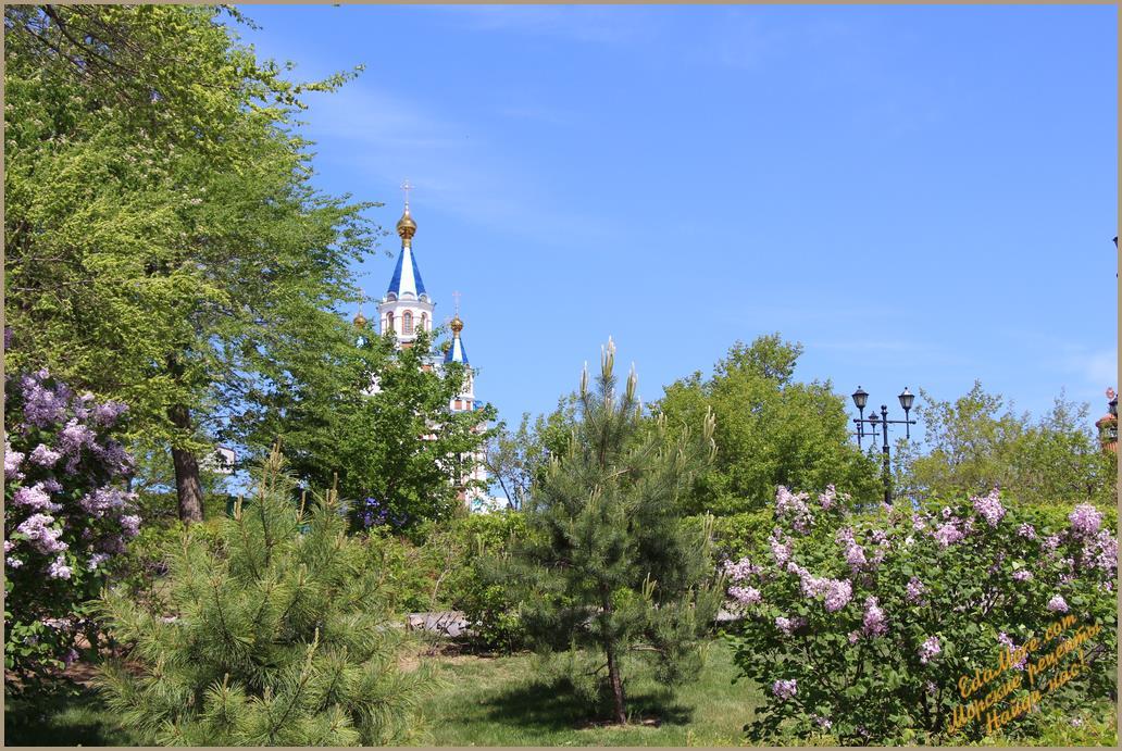 рисование весеннего пейзажа, весенний пейзаж фото, изо весенний пейзаж