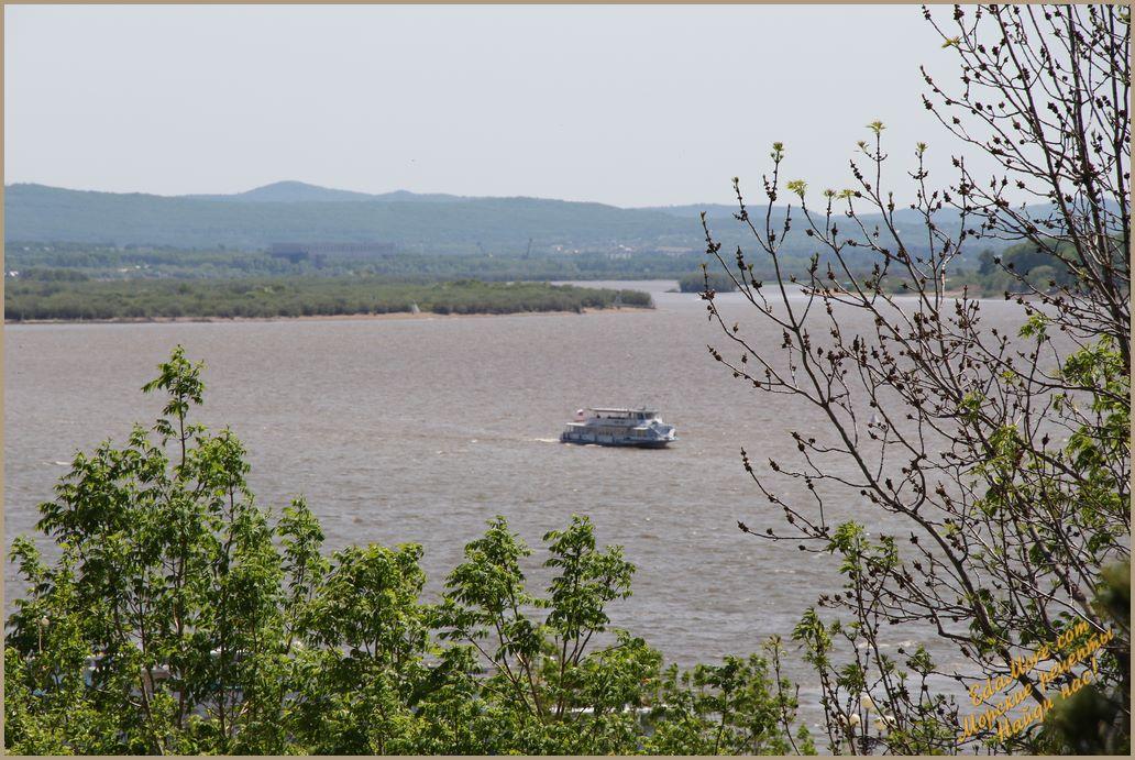 река амур впадает, течение реки амур, река амур находится