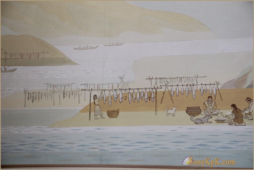 краеведческий музей фото, краеведческий музей города, краеведческий музей ископаемые