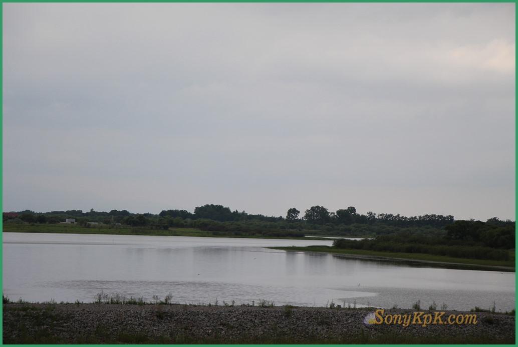 По левую руку домики прячутся в густой растительности. Вот что хорошо у нас здесь растет - так это трава! Влажный воздух, влажная почва, все это дает шикарные заросли травы, осоки. Но, вот для картофеля, конечно, лучше всего почва именно ЕАО, более сухая и песчаная. Или юг Хабаровского края, ближе к Приморью.